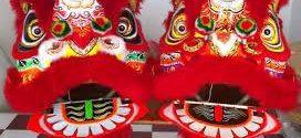 van-chuyen-dau-lan--tuong-phat-di-my--uc--canada--_s743