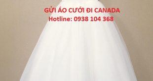 aocuoi1234