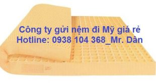 14089201_714227398717452_4418477539128179912_n1111